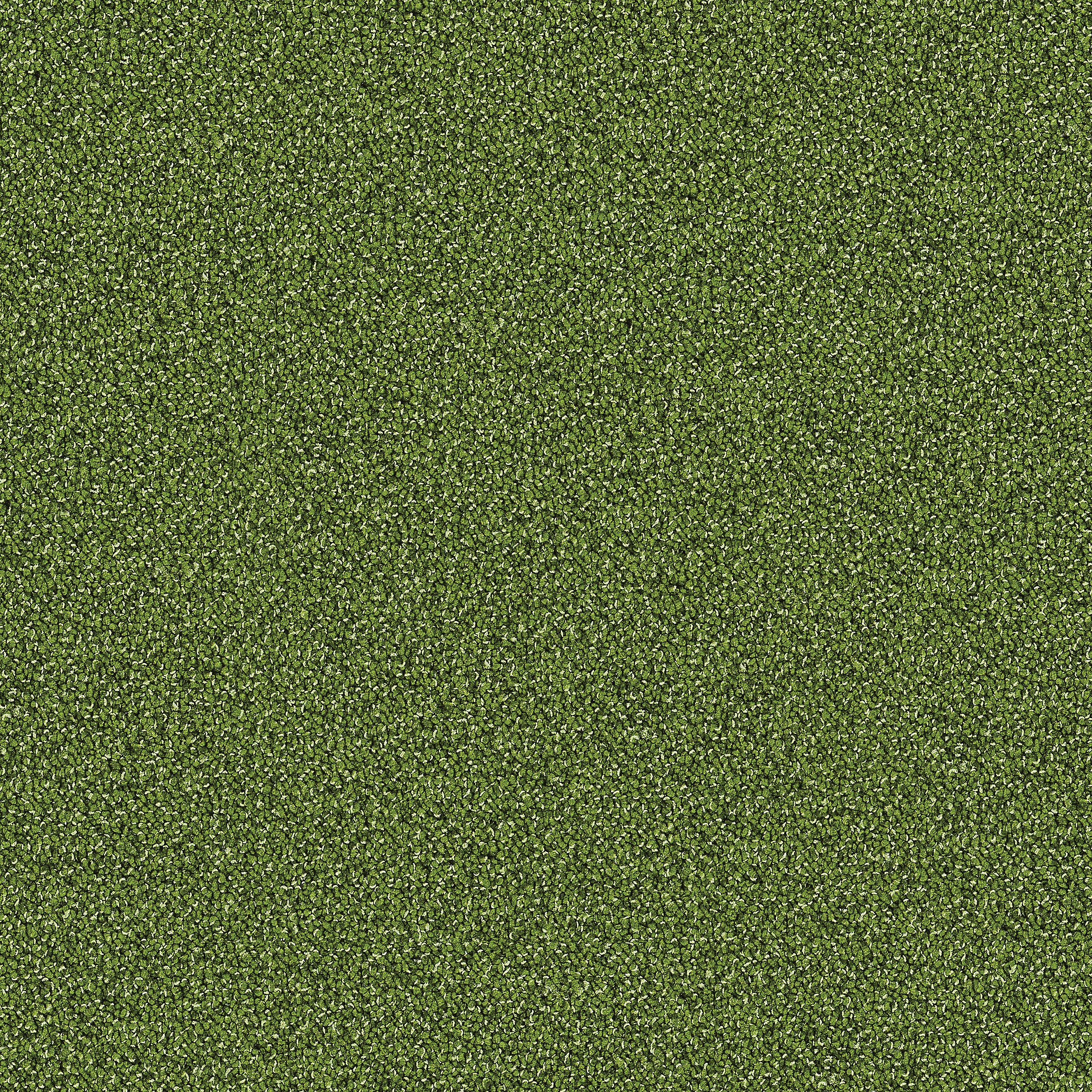 Interface Touch And Tones 101 Moss 4174016 Touch And