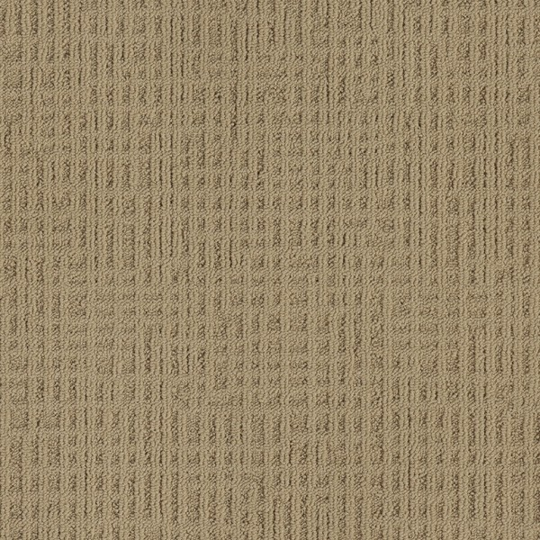 Interface Monochrome Barley 346730
