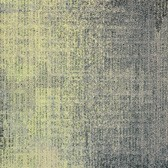Milliken Dissident Transition 2.0 Cultivation/Ombre DTR13-103-13-173