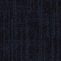 Desso Frisk B574 8901