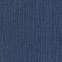 Interface Monochrome Iris 346711