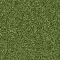 Interface Touch and Tones 101 Moss 4174016