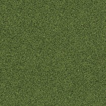 Interface Touch and Tones 102 Moss 4175016