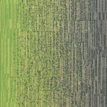 Milliken Laylines Transitions Zing Sweater LLT141-103-173-06